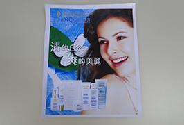 PVC πανό εκτυπωμένο από εκτυπωτή οικολογικού διαλύτη 3,2 μέτρων (10 ποδιών) WER-ES3201 3